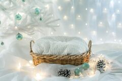 Free Basket For Baby Decorated With  Christmas Tree Stock Photos - 169061553