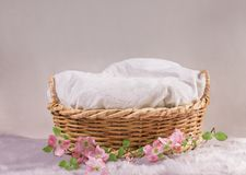 Free Basket For Baby With Flowers Royalty Free Stock Image - 133002016