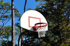 Basket. This is a basket in the forrest Royalty Free Stock Photography