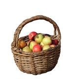 A basket of fresh apples Stock Image
