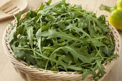 Basket with fresh arucola salad Royalty Free Stock Image