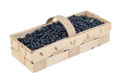 Basket of fresh blueberries Stock Photos