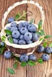 Basket with fresh Blueberry Royalty Free Stock Photo
