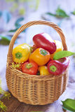 Basket with fresh colorful peppers Stock Images