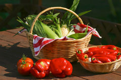 Basket of fresh corn with peppers Royalty Free Stock Photos