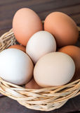 Basket of Fresh Eggs Stock Images