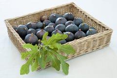 Basket of fresh figs Stock Photos