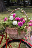 Basket of fresh flowers on the bike Royalty Free Stock Image