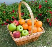 Basket of fresh fruit Royalty Free Stock Photo