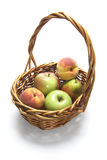 Basket of Fresh Fruits Stock Image