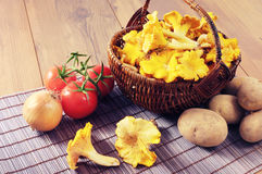 Basket with fresh golden chanterelles and potatos tomatos on tab. Basket with fresh golden chanterelles and potatos, tomatos, onion on table Stock Photo