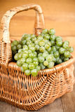 Basket with fresh green grapes Stock Image