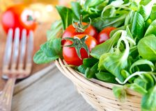 A basket of fresh green salad with tomatoes Royalty Free Stock Images
