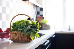 Basket with fresh greens Stock Image
