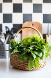 Basket with fresh greens Royalty Free Stock Photos