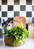 Basket with fresh greens Royalty Free Stock Photography
