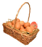 Basket Of Fresh Hens Eggs Royalty Free Stock Image