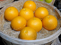 A Basket of Fresh Oranges. On display at a Farmers' Market royalty free stock image