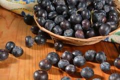 Basket of fresh organic blueberries Royalty Free Stock Images