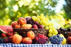 Basket with fresh organic fruits Stock Photo