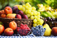 Basket with fresh organic fruits Royalty Free Stock Photography