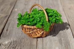 Basket of fresh parsley stock photos