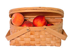 Basket of Fresh Peaches and Nectarines Stock Image