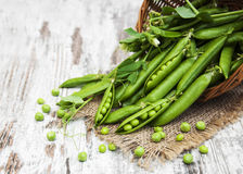 Basket with fresh peas Stock Images