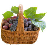 Basket with fresh plums and grapes. Royalty Free Stock Photo