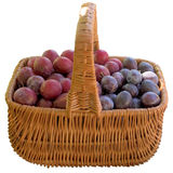 Basket with fresh plums. Royalty Free Stock Photography