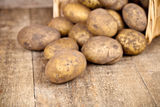 Basket with fresh potatoes Royalty Free Stock Photo
