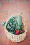 Basket with fresh produce Royalty Free Stock Images