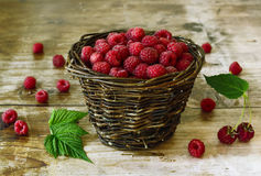 Basket of  fresh raspberries Stock Photography