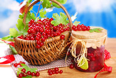 Basket of fresh red currant and jar of preserve Royalty Free Stock Photos
