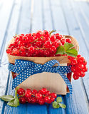 Basket with fresh red currants. Little wooden basket with fresh red currants Stock Photo