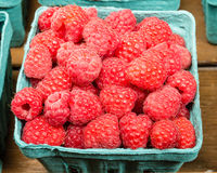 Basket of fresh Red Raspberries. A basket of fresh red raspberries on display at the market Royalty Free Stock Images
