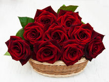 Basket with Fresh Red roses Stock Photos