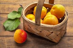Basket of ripe apricot on rustic wood Royalty Free Stock Photo