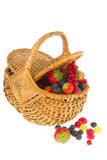 Basket fresh soft forest fruit Stock Photography