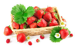 Basket fresh strawberry with green leaf and flower Stock Photo