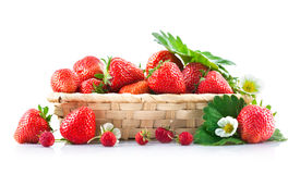Basket fresh strawberry with green leaf and flower Stock Images