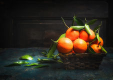 Basket with Fresh tangerines with green leaves, dark Royalty Free Stock Photos