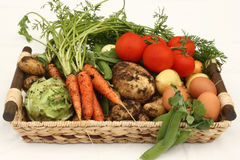 Basket with fresh vegetables and eggs. Tray with collection of freshly harvested, organic vegetables and eggs Stock Photography