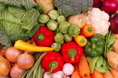 Basket of Fresh Vegetables Stock Photography