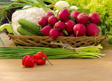 Basket with fresh vegetables and herbs. Basket with vegetables such as lettuce, cucumbers, onions, chives, cauliflower, radish Royalty Free Stock Photo