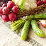 Basket with fresh vegetables and herbs. Basket with vegetables such as lettuce, cucumbers, onions, chives, cauliflower, radish Stock Photography