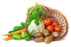 Basket with fresh vegetables Stock Images