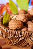 Basket with fresh walnuts Royalty Free Stock Photo