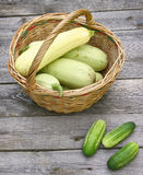 Basket with fresh zucchini and cucumber Royalty Free Stock Photos