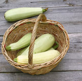 Basket with fresh zucchini Stock Image